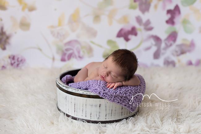 Primavera // púrpuras flores, zorro de conejo pájaros bosques vivero lila púrpura pastel niñas pequeñas niña bebé tela de impresión - andrea_lauren - Spoonflower