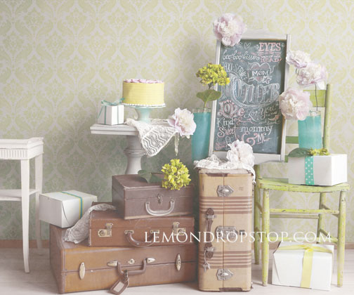 LemonDrop Shop Backdrops