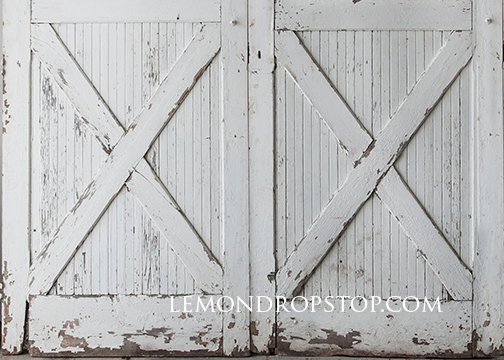 Barn Door Backdrop Image Collections Doors Design Modern